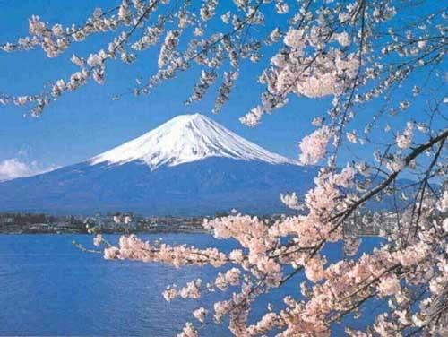 shintoism .com